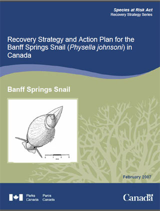 Species at Risk Act recovery strategy series, recovery strategy and action plan for the Banff springs snail (Physella johnsoni) in Canada (February 2007).