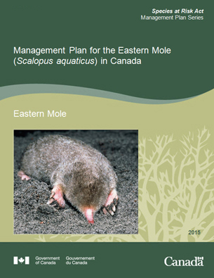 Management Plan for the Eastern Mole report Cover page image