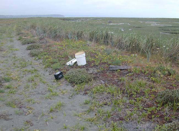 The photos show habitat at (f) a dune margin and saltmarsh at Dungeness Spit, Washington State