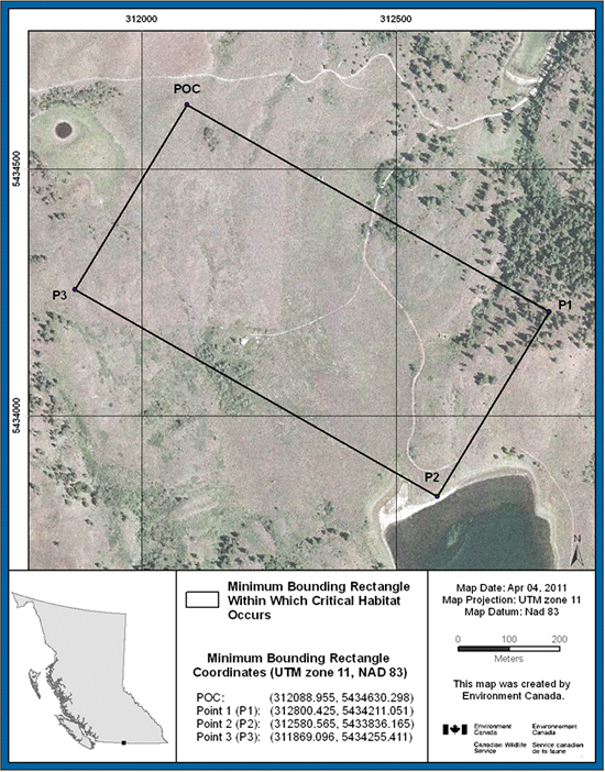 Figure 6 shows the minimum bounding rectangle and coordinates, within which critical habitat for Sage Thrasher occurs at Kilpoola Lake, British Columbia. The ortho-photograph includes UTM zone, map datum, date in which map was produced and the approximate area in metres.