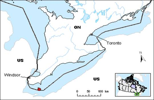 Figure 2 is a map of the Canadian Range of Blanchard's Cricket Frog. The species' presence was confirmed during the 1970s only on Pelee Island.