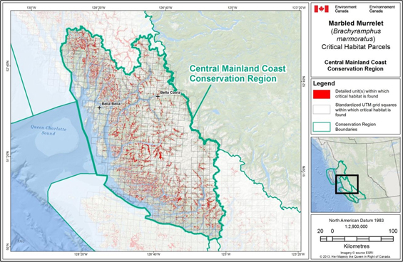 Fig B-3: Map showing scattered locations of critical habitat throughout the Central Mainland Coast Conservation Region. (See long description below)