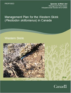 Cover of the publication: Management Plan for the Western Skink