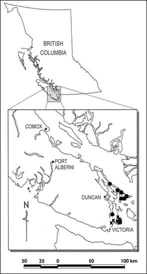 Map showing the Canadian range of the Slender Popcornflower, including historical and extant populations.
