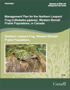 Cover page of the publication: Management Plan for the Northern Leopard Frog (Lithobates pipiens), Western Boreal/ Prairie Populations, in Canada [PROPOSED] – 2012.
