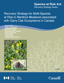 Species at Risk Act Recovery Strategy Series. Recovery Strategy for Multi-Species at Risk in Maritime Meadows associated with Garry Oak Ecosystems in Canada