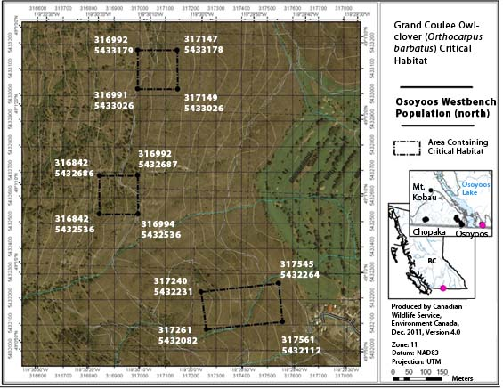 Figure A3 is a map showing the area containing critical habitat for the Osoyoos Westbench population – south.
