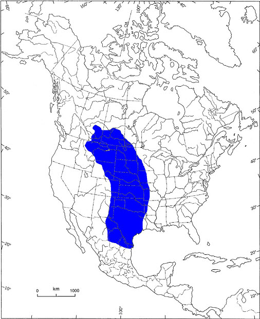 Approximate  range of the Prairie Loggerhead Shrikein North America