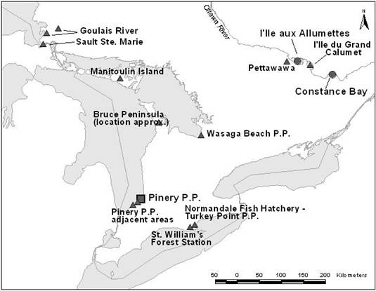 Map showing the distribution of Cicindela patruela in Canada, indicating historic records, current occurrence, and surveyed sites.