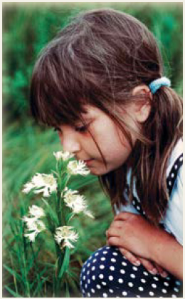 A young girl in pigtails is kneeling down in the tall grass, smelling a light coloured flower.