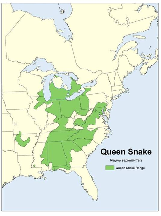 Map of the global range of the Queensnake.