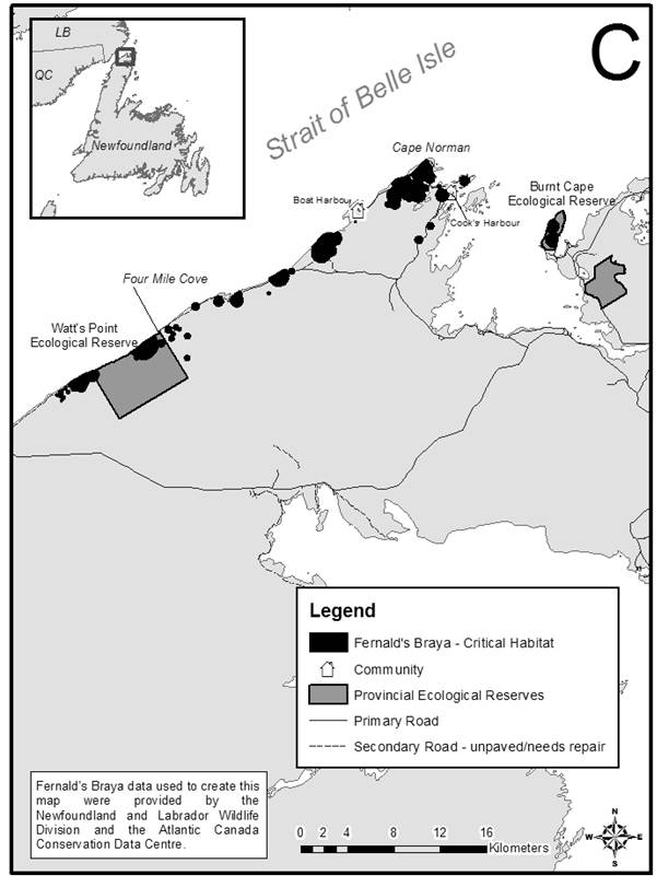 Figure 7C is a map showing locations of critical habitat for the Fernald's Braya, from Watts Point Ecological Reserve to Burnt Cape Ecological Reserve, on the limestone barrens of the Great Northern Peninsula of insular Newfoundland.