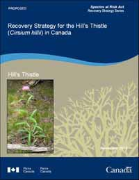 Species at Risk Act Recovery Strategy Series Recovery Strategy for the Hill's Thistle (Cirsium hillii) in Canada November 2010