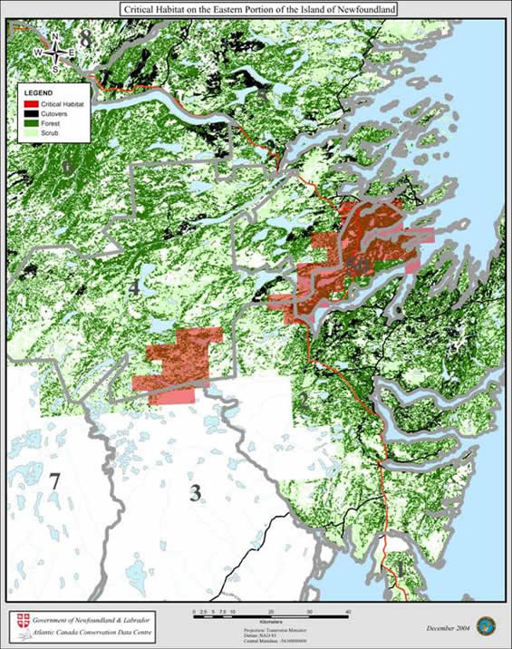 Figure 5 shows the location of critical habitat on the eastern portion of the Island of Newfoundland.