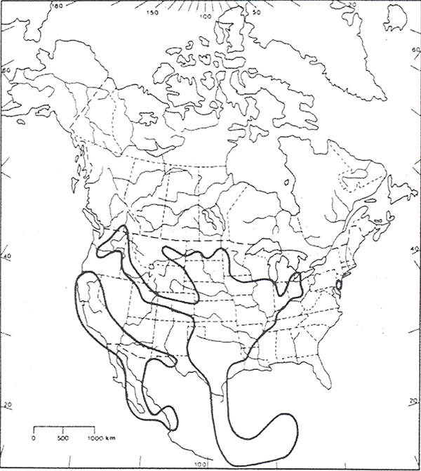 Figure 2. Range of scarlet ammannia in North America (Pryer and Keddy 1987). (See long description below)