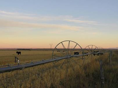 Photo of irrigation equipment north of Head-Smashed-In Buffalo Jump near Township 104.