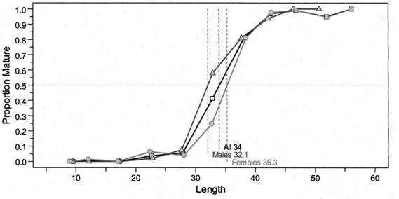 Chart showing maturity ogives for Darkblotched Rockfish using length grouped at 5-centimetre intervals.