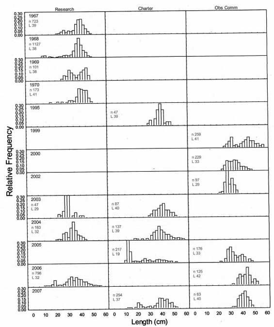 Series of charts showing the relative frequency of Darkblotched Rockfish lengths (in centimetres) by calendar year and trip type. Trip types are research vessel, charter vessel, and observer commercial trawl.