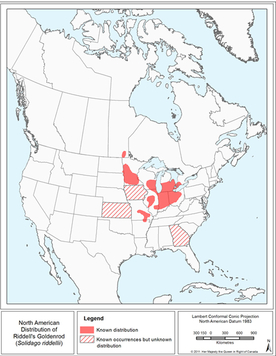 North American distribution of Riddell's Goldenrod. (See long description below)
