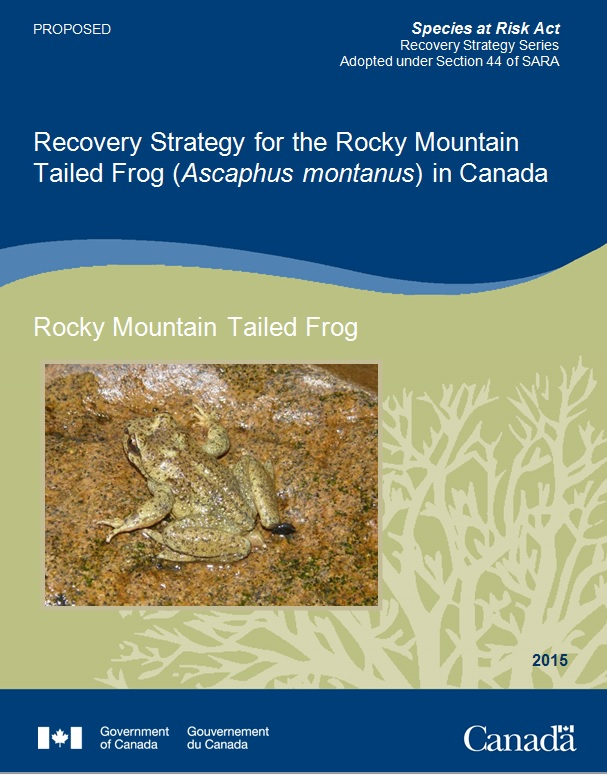 Cover page of Rocky Mountain Tailed Frog