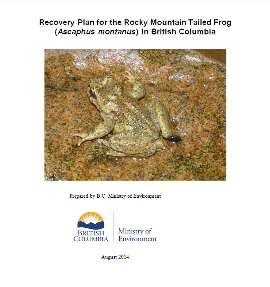 Cover page 2 of Rocky Mountain Tailed Frog