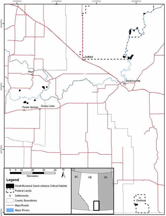 Appendix C shows two maps (one for Saskatchewan, one for Alberta) of the critical habitat for the small-flowered sand verbena.