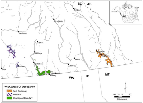 Figure 2 is a map of the areas of occupancy of Williamson's Sapsucker in British Columbia. The area of East Kootenay is shown in orange diagonal stripes, the area of Western is shown in purple diagonal stripes, and the area of Okanagan-Boundary is shown in green.
