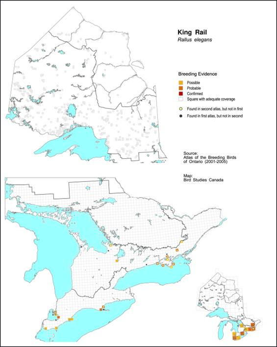 Map showing King Rail breeding evidence obtained during the 2001 to 2005 Ontario breeding bird atlas project.