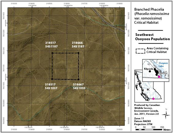 Figure A4 is a map showing the area containing critical habitat for the Southwest Osoyoos population.