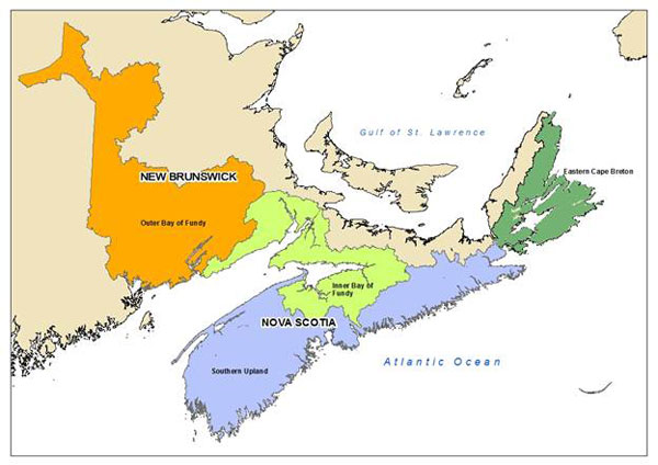 Figure 1. Four areas are highlighted in different colours to indicate where the different salmon populations are located (the Outer Bay of Fundy, the Inner Bay of Fundy population, the Southern Upland population area and the Eastern Cape Breton population).