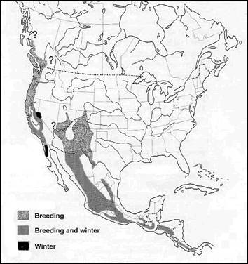Map shows the distribution of the Band-tailed Pigeon in North and Central America; the species is also found in South America.
