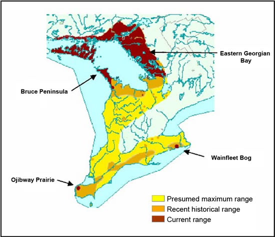 Map showing range-wide decline of the Massasauga (see long description below).