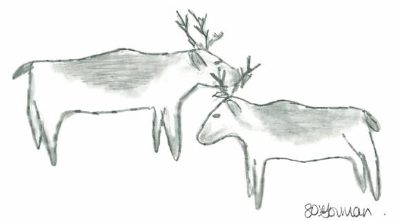 Cover Illustration: Peary Caribou, Tuktu, Rangifer tarandus pearyi, designated Endangered by COSEWIC in May 2004. Drawing by Shelly O'Gorman, Iqaluit, Nunavut.