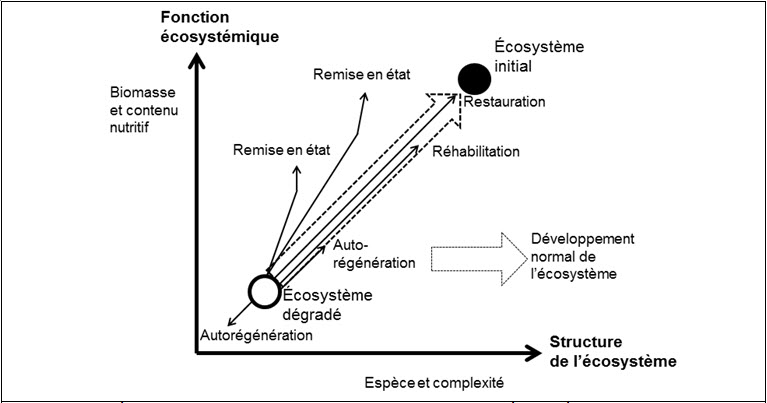 Degradation or loss of ecosystem structure and functions
