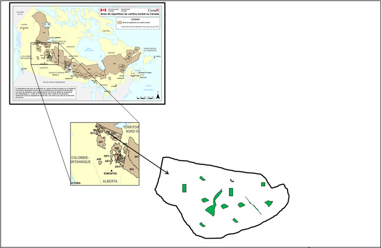 Multi-scale perspectives of caribou habitat restoration