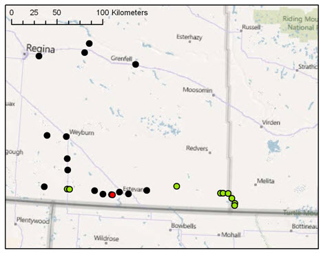 Map of sites where the Greenish-white Grasshopper was searched for in eastern Saskatchewan and areas close to the Saskatchewan-Manitoba border in 2010 (see long description below).