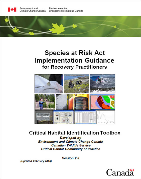 Cover photo of Species at Risk Guide