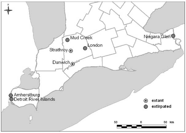 Map showing the distribution of Drooping Trillium in Canada.