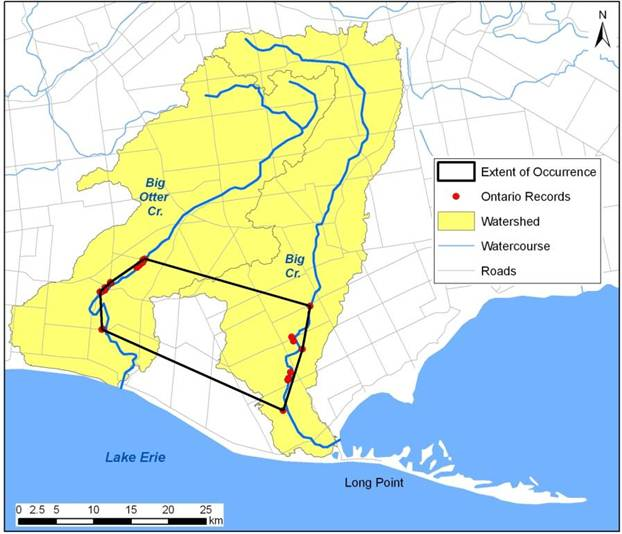 Map showing extent of occurrence of the Riverine Clubtail in Ontario (see long description below).
