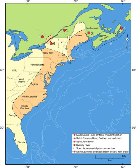Figure 2. The general range of the yellow lampmussel, on the Atlantic slope of eastern North America