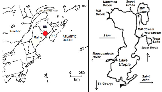 Two maps. One indicates the location of Lake Utopia in New Brunswick, and the other shows Lake Utopia and the spawning tributaries used by Small and Large Rainbow Smelt