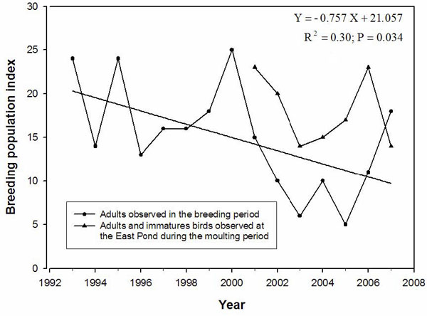 Chart showing the number of adult Horned Grebes observed during the breeding season and the number of adults and immatures observed during the moulting period on the Magdalen Islands, Quebec, from 1993 to 2007.