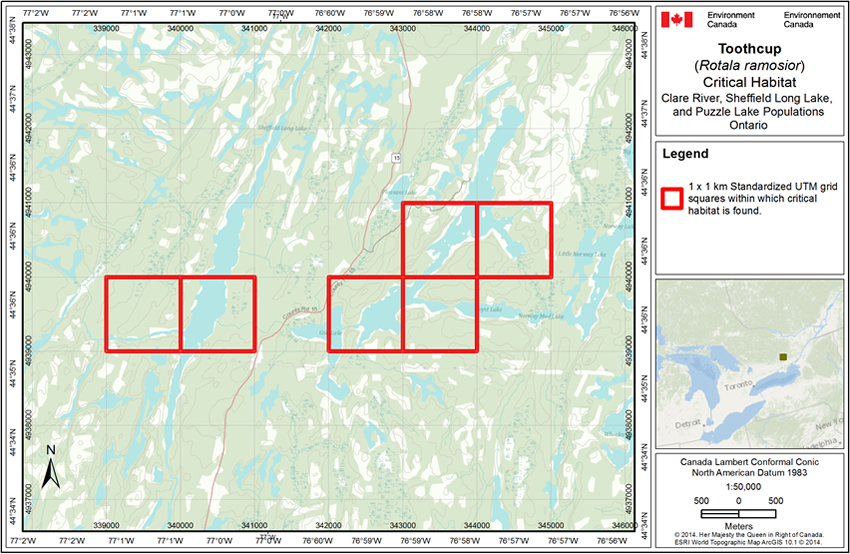 Figure A4 is a map of where critical habitat for the Clare River, Sheffield Long Lake and Puzzle Lake populations can be found.