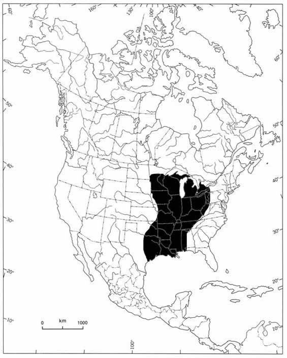 Map showing the global range of the Threehorn Wartyback. The species is limited to central North America, where it is widely distributed in the Great Lakes, Mississippi River and Mobile River drainages.