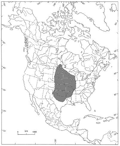 Map showing current range of Agalinis in North America.