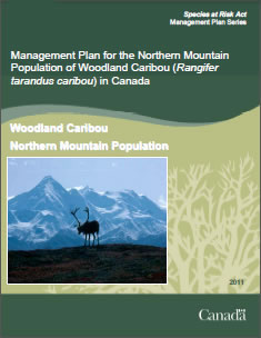 Cover of the publication: Management Plan for the Northern Mountain Population of Woodland Caribou (Rangifer tarandus caribou) in Canada – 2012