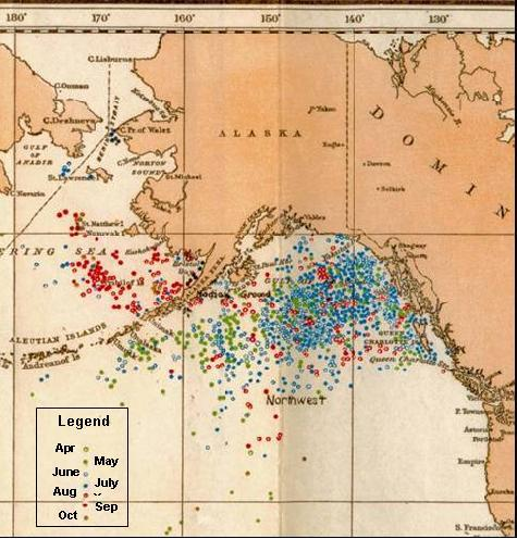 Map of historical right whale catches from 1785 – 1913 in the eastern North Pacific from logbook records of American whaleships (replicated from Townsend 1935)