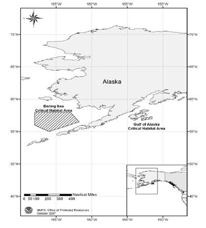 Designated critical habitat for the North Pacific Right Whale in U.S. waters (from NMFS 2009).