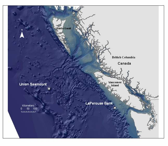 Locations of the initial phase (2006 and 2007) of passive acoustic monitoring conducted by Fisheries and Oceans Canada in Pacific Canadian waters (Ford et al. in prep., a). Map of B.C. - Extracted Vector Shoreline Series, Government of Canada, Department of Fisheries and Oceans, Science, Canadian Hydrographic Service. Bathymetry layer - Pacific Offshore Bathymetry Surface, Fisheries and Oceans Canada, Oceans, Habitat and Enhancement Branch GIS Unit (Pacific).