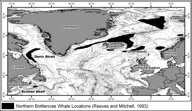 Figure 1. Global range of northern bottlenose whale. Source: Reeves and Mitchell, 1993.